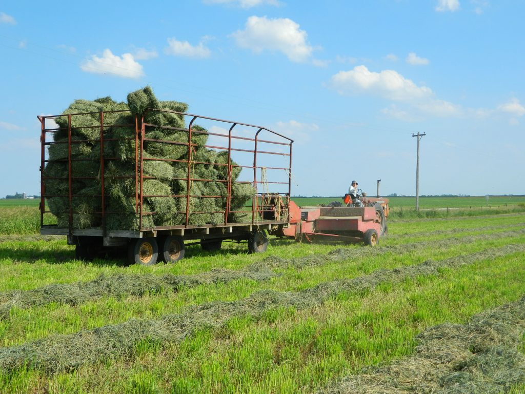 June 2013 Haybaling 027