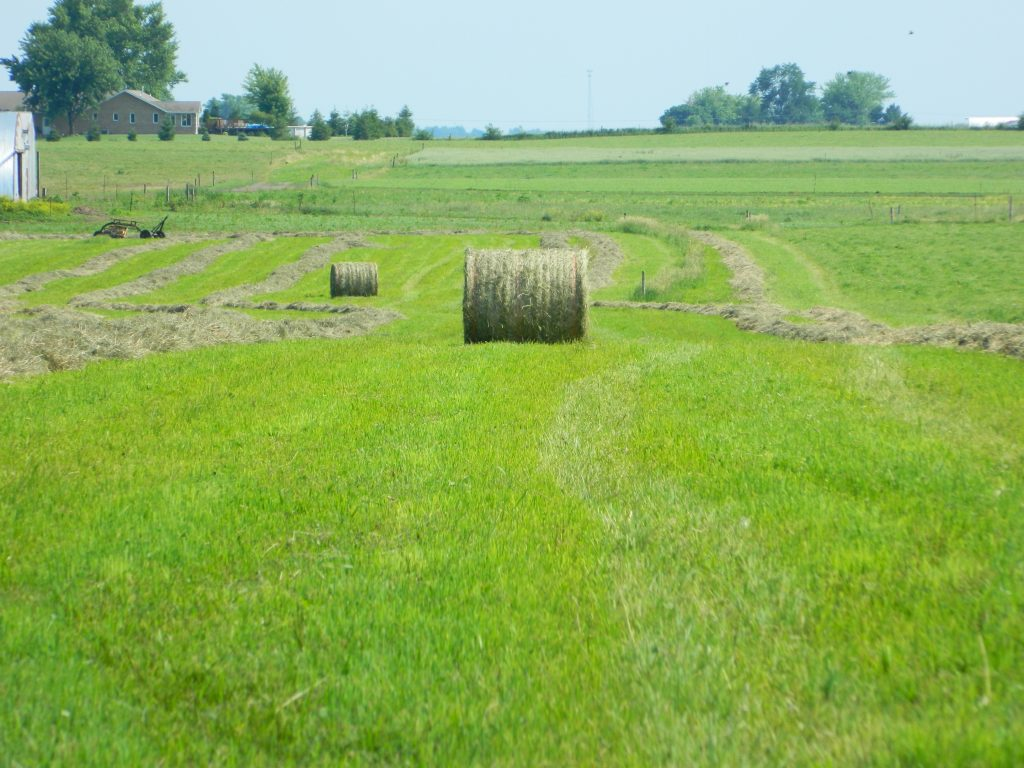 June 2013 Haybaling 058
